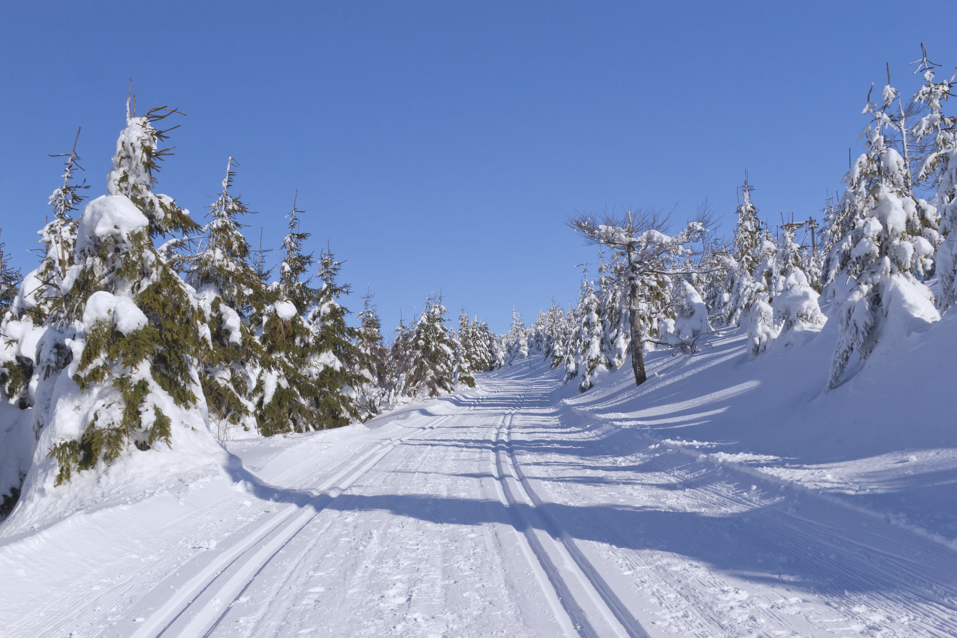 Winter mountain landscape with cross country skiing way.